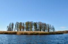 Lielā Baltezera sala. Foto Jānis Tiļčiks. 2015.gada oktobris.
