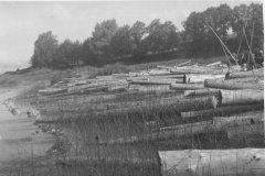 Baļķi krastā. Foto 20.gs. 50.gadi.