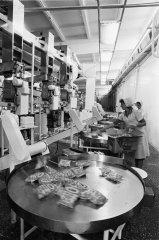 """Kartupeļu pārstrādes līnija kolhozā """"Ādaži''. 1986.gads."""